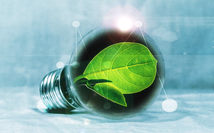 A lightbulb with a green leaf inside is positioned on its side in front of a greyish blue background.